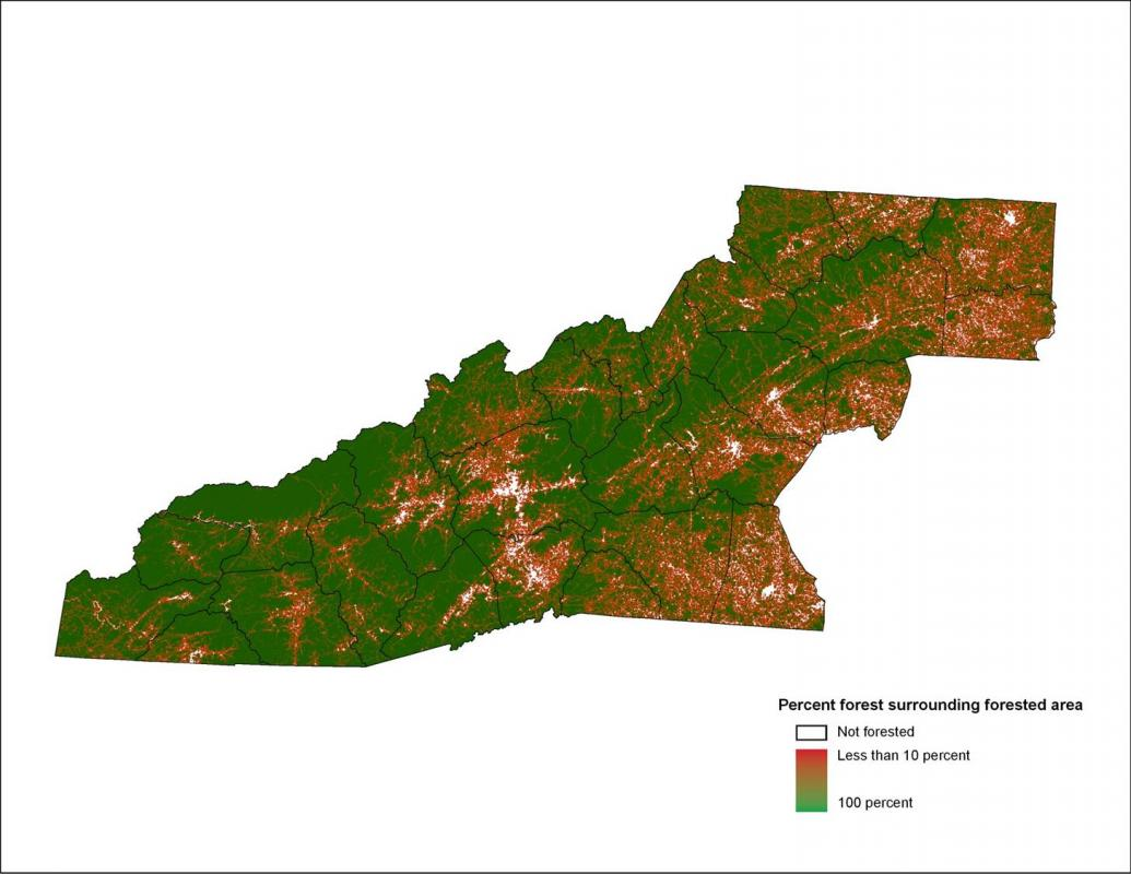 Usda Rual Development Forest Fragmentation Western North Carolina Vitality Index