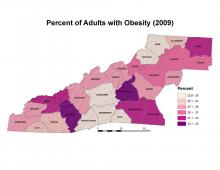 Percent of Adults with Obesity (2009) Map