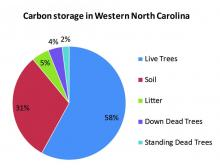 Carbon Storage in Western North Carolina