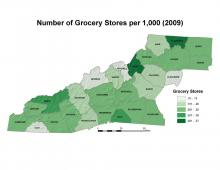 Number of Grocery Stores per 1,000 People Map (2009)