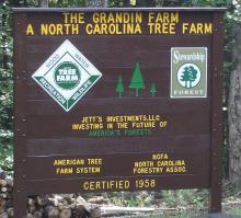 Grandin Tree Farm Sign